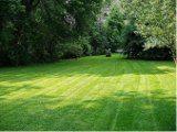 ako opraviť trávnik