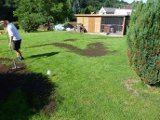 oprava trávnika