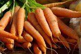 mrkva zdroj vitamínu A