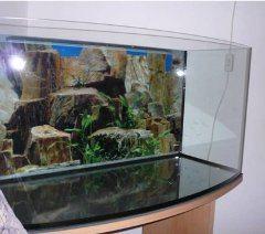 prázdne akvárium