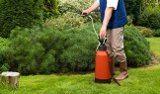 ako odstraniť peň zo záhrady