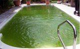 ako sa starať o vodu v bazene