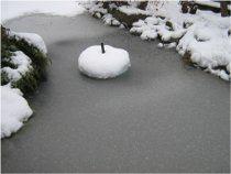 záhradné jazierko počas zimy
