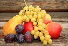 ovocie a vinné mušky