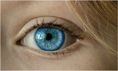 typy kontaktných šošoviek