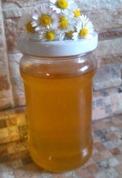ako pripraviť sedmokráskový med