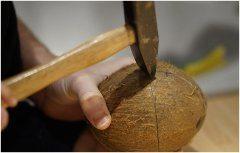 otváranie kokosu kladivom