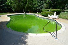 ako odstrániť riasy v bazéne