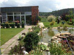 ako si naplánovať vodnú záhradu