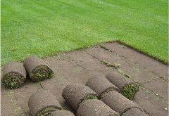 ako vytvoriť trávnik položením mačiny