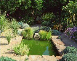 pravidelné jazierko so stojatou vodou