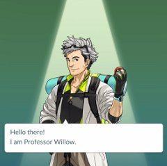 profesor Willow