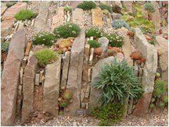 pokladanie kameňov do záhradnej skalky