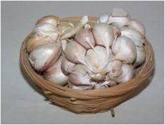 sušenie cesnaku