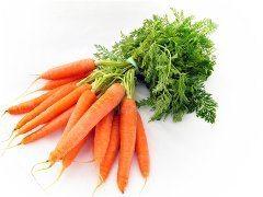 ako si vypestovať domácu mrkvu na záhradke