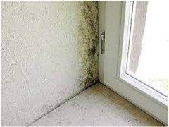 odstraňovanie plesne na stene pri okne