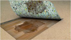 pleseň pod podlahou