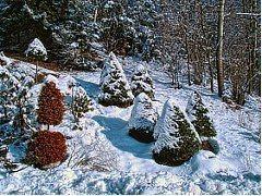 príprava záhrady na zimu