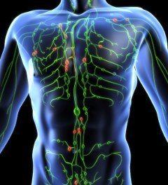 ako rýchlo vyčistiť lymfatický systém