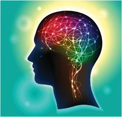 neurobik a tréning mozgu