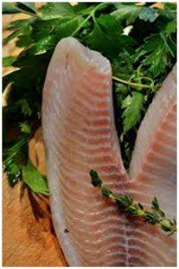 čerstve platky tuniaka