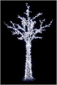 osvetlenie stromčekov počas zimy