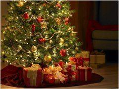vianočná atmosféra a zdobenie stromčeka