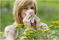 čo pomáha na peľovú alergiu