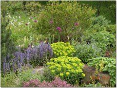 návod ako založiť vidiecku záhradku