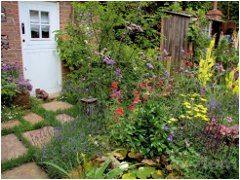 organizácia vidieckej záhrady