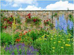 pekná vidiecká záhrada