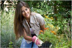 čo robiť v apríli na záhradke