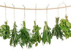 ako si vybrať bylinky kvôli tlaku
