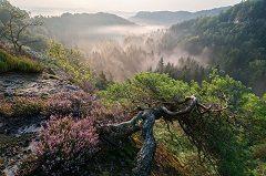 návšteva Českého raja