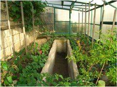 planovanie a stavba skleníka