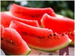 ako rozpoznať zrelý a nezrelý melón