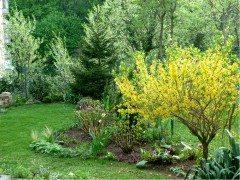 aprílova záhrada