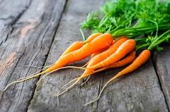účinky mrkvy
