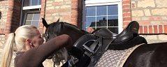 návod ako osedlať koňa
