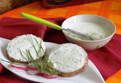 ako vyrobiť z jogurtu roztierateľný syr