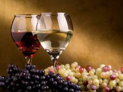 domáce ovocné víno