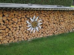 sušiť drevo