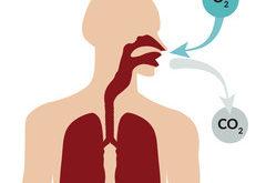 upokojiť sa dýchaním
