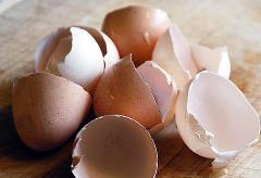 vaječné škrupiny