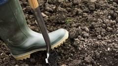návod ako zistiť pH pôdy