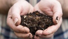 meranie ph v pôde