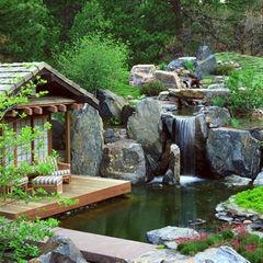 jazierko na zahrade