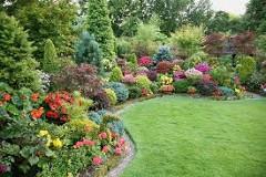 okrasné záhony so zelenými rastlinami