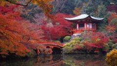 parky v Japonsku