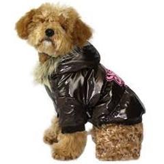 psie oblečenie - pláštenka